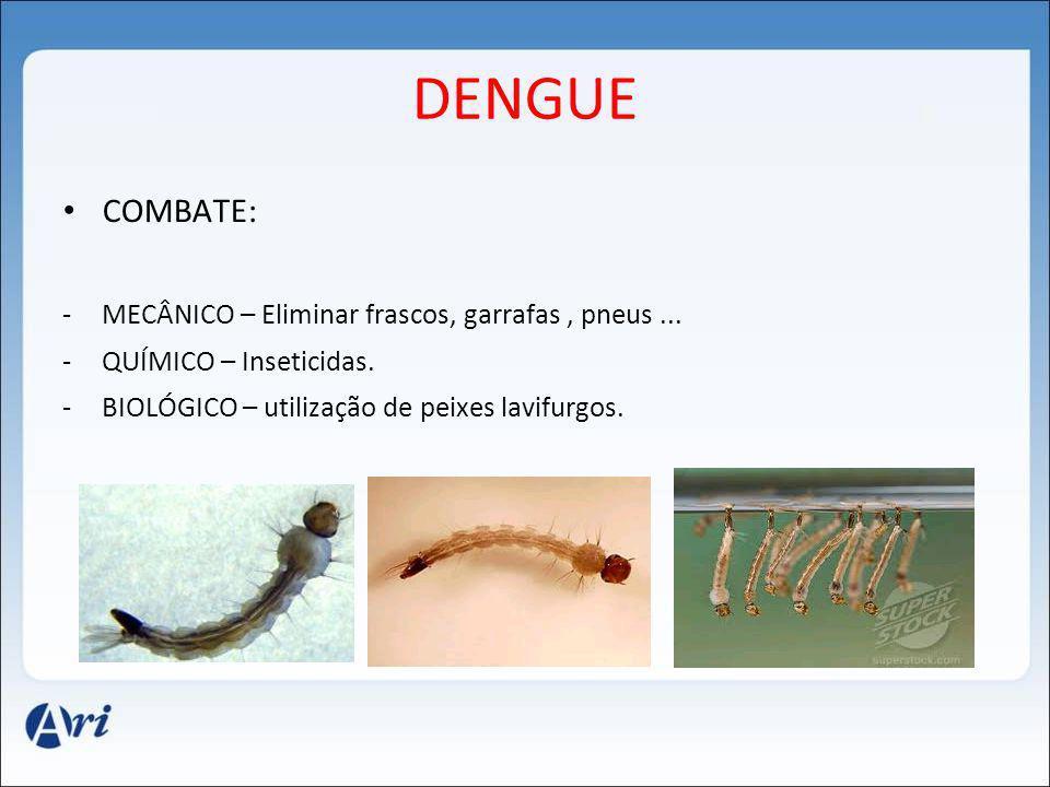 DENGUE COMBATE: -MECÂNICO – Eliminar frascos, garrafas, pneus... -QUÍMICO – Inseticidas. -BIOLÓGICO – utilização de peixes lavifurgos.
