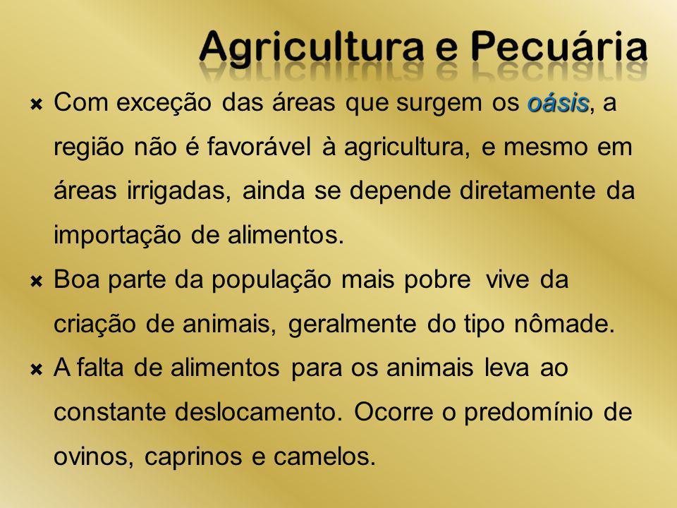 oásis Com exceção das áreas que surgem os oásis, a região não é favorável à agricultura, e mesmo em áreas irrigadas, ainda se depende diretamente da i