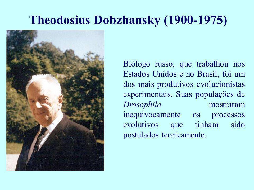 J.B. S. Haldane (1892-1964) Biólogo inglês, também um dos fundadores da Genética de populações.