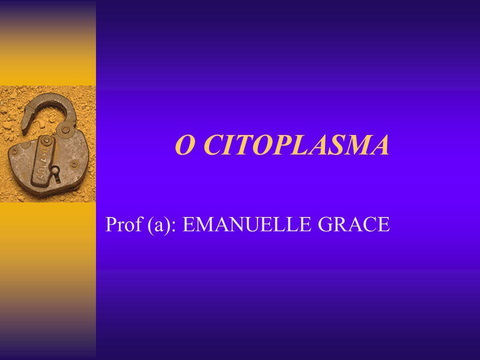 SUMÁRIO Organização geral do citoplasma O citoplasma das células procarióticas O citoplasma das células eucarióticas Organelas citoplasmáticas Retículo endoplasmático Complexo Golgiense Lisossomos Peroxissomos
