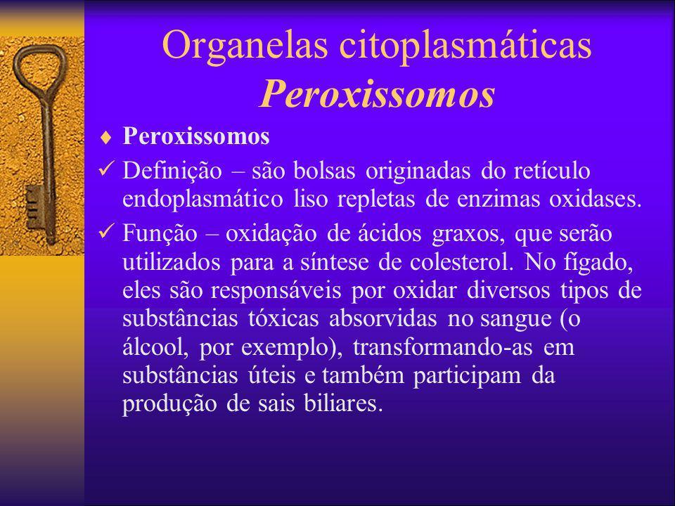 Organelas citoplasmáticas Peroxissomos Peroxissomos Definição – são bolsas originadas do retículo endoplasmático liso repletas de enzimas oxidases. Fu