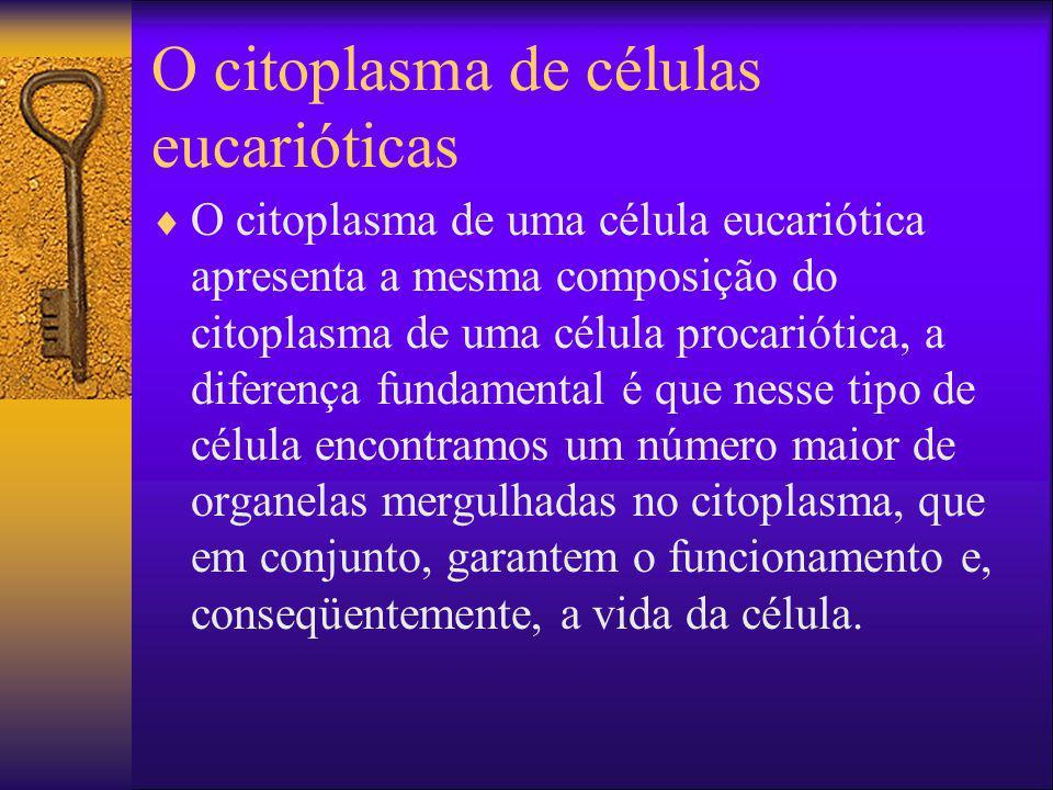 O citoplasma de células eucarióticas O citoplasma de uma célula eucariótica apresenta a mesma composição do citoplasma de uma célula procariótica, a d