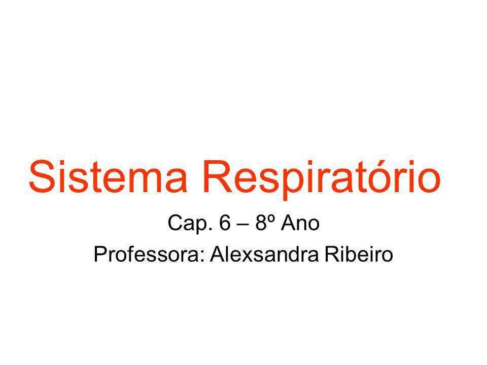 Sistema Respiratório Cap. 6 – 8º Ano Professora: Alexsandra Ribeiro