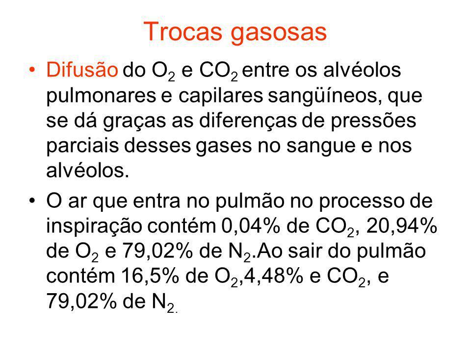 Trocas gasosas Difusão do O 2 e CO 2 entre os alvéolos pulmonares e capilares sangüíneos, que se dá graças as diferenças de pressões parciais desses g