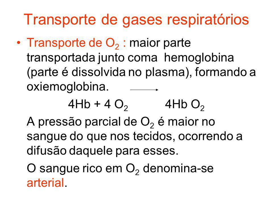 Transporte de gases respiratórios Transporte de O 2 : maior parte transportada junto coma hemoglobina (parte é dissolvida no plasma), formando a oxiem