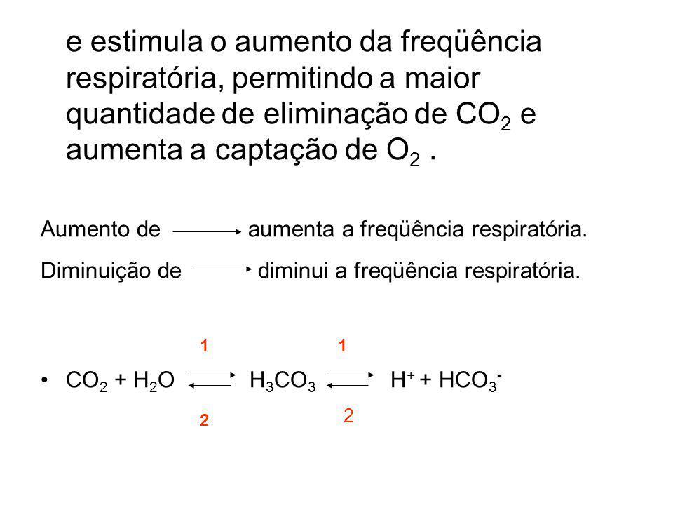 e estimula o aumento da freqüência respiratória, permitindo a maior quantidade de eliminação de CO 2 e aumenta a captação de O 2. Aumento de aumenta a