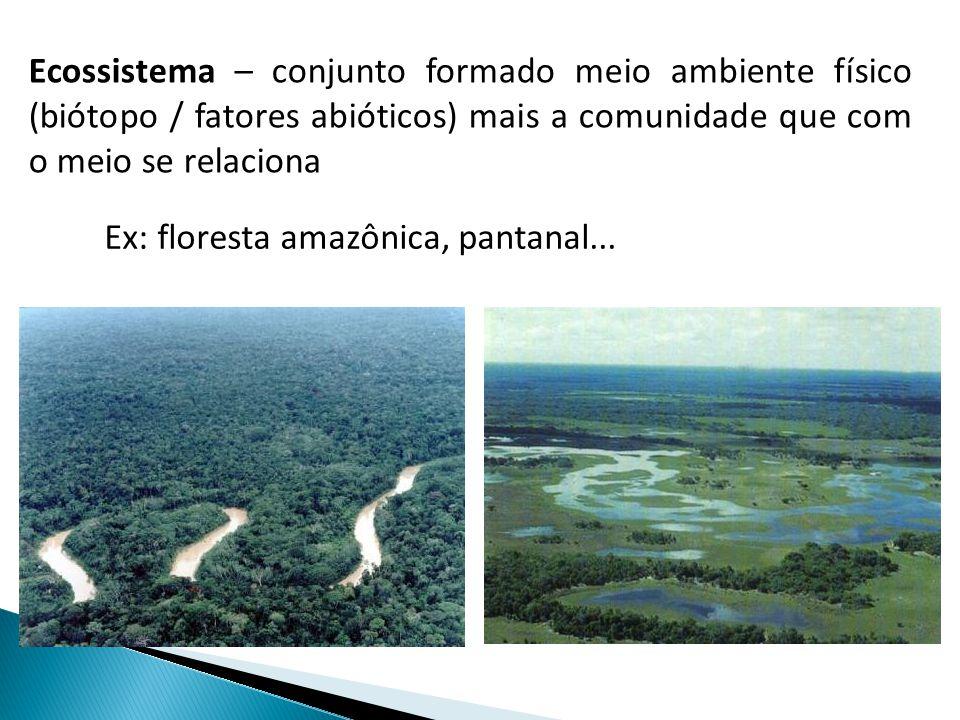 Ecossistema – conjunto formado meio ambiente físico (biótopo / fatores abióticos) mais a comunidade que com o meio se relaciona Ex: floresta amazônica