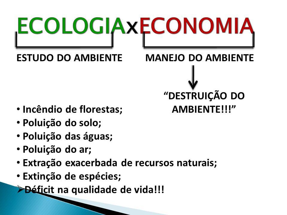 * Talassociclo: biociclo marinho.