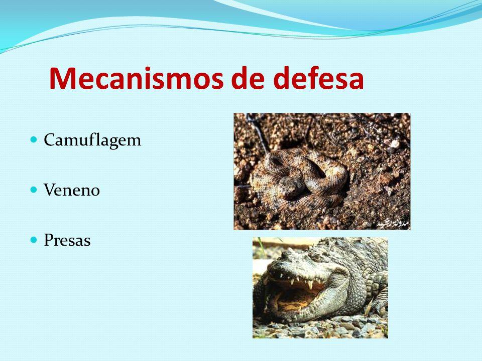 Mecanismos de defesa Camuflagem Veneno Presas
