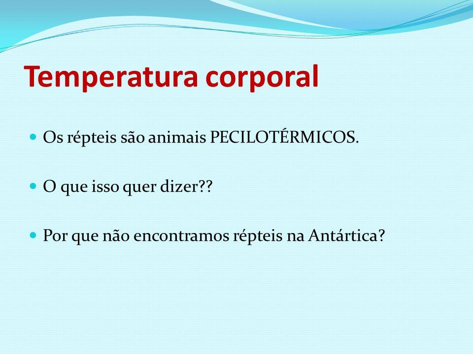Temperatura corporal Os répteis são animais PECILOTÉRMICOS. O que isso quer dizer?? Por que não encontramos répteis na Antártica?