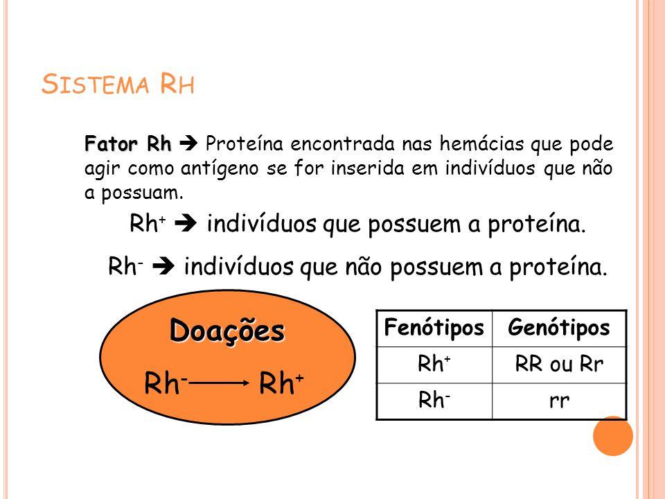 S ISTEMA R H Fator Rh Fator Rh Proteína encontrada nas hemácias que pode agir como antígeno se for inserida em indivíduos que não a possuam. Rh + indi