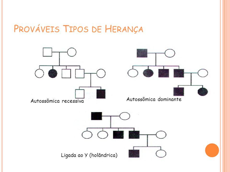 P ROVÁVEIS T IPOS DE H ERANÇA Autossômica recessiva Autossômica dominante Ligada ao Y (holândrica)