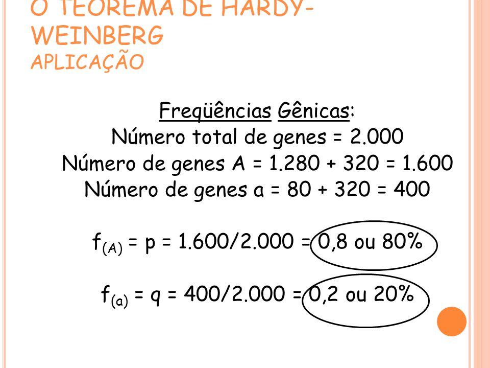 O TEOREMA DE HARDY- WEINBERG APLICAÇÃO Freqüências Gênicas: Número total de genes = 2.000 Número de genes A = 1.280 + 320 = 1.600 Número de genes a = 80 + 320 = 400 f (A) = p = 1.600/2.000 = 0,8 ou 80% f (a) = q = 400/2.000 = 0,2 ou 20%