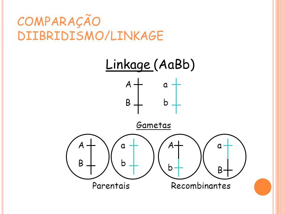 COMPARAÇÃO DIIBRIDISMO/LINKAGE Linkage (AaBb) A B a b Gametas A B a b A b a B ParentaisRecombinantes