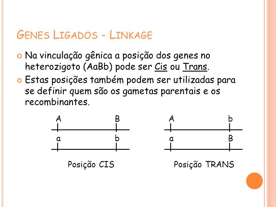 G ENES L IGADOS - L INKAGE Na vinculação gênica a posição dos genes no heterozigoto (AaBb) pode ser Cis ou Trans.