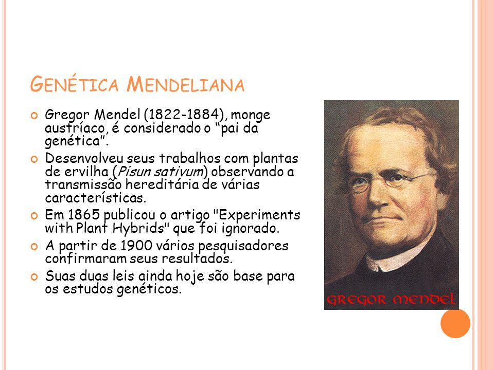 G ENÉTICA M ENDELIANA Gregor Mendel (1822-1884), monge austríaco, é considerado o pai da genética. Desenvolveu seus trabalhos com plantas de ervilha (