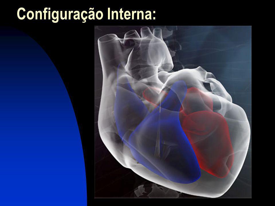 19 A atividade elétrica do coração Nódulo sinoatrial (SA) ou marcapasso ou nó sino-atrial: controla a freqüência cardíaca.