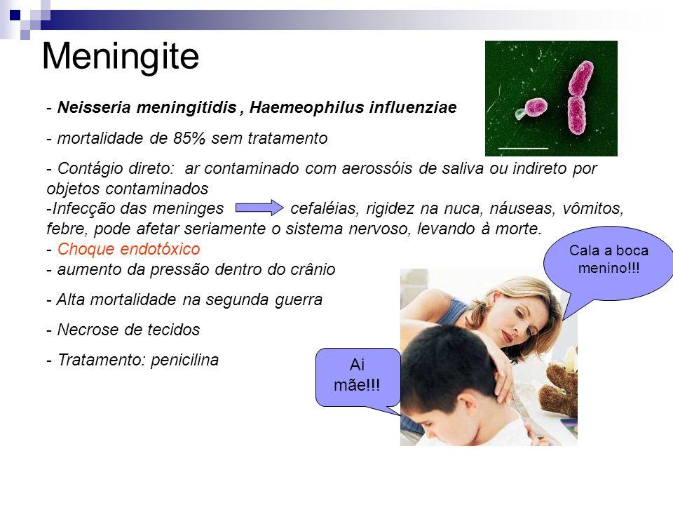 Meningite - Neisseria meningitidis, Haemeophilus influenziae - mortalidade de 85% sem tratamento - Contágio direto: ar contaminado com aerossóis de sa