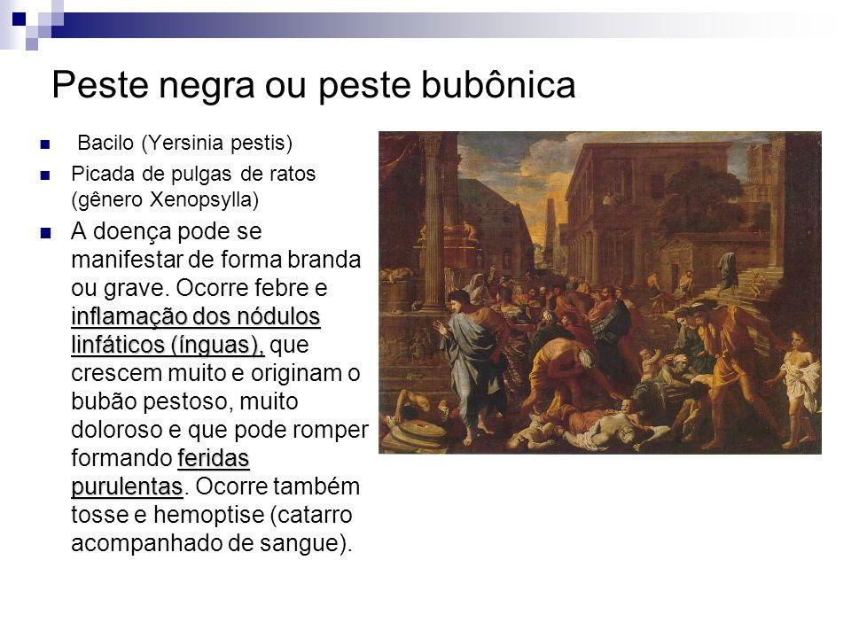 Peste negra ou peste bubônica Bacilo (Yersinia pestis) Picada de pulgas de ratos (gênero Xenopsylla) inamação dos nódulos linfáticos (ínguas), feridas