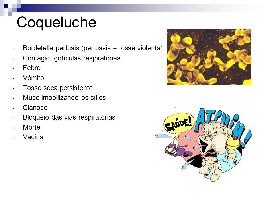 Coqueluche - Bordetella pertusis (pertussis = tosse violenta) - Contágio: gotículas respiratórias - Febre - Vômito - Tosse seca persistente - Muco imo