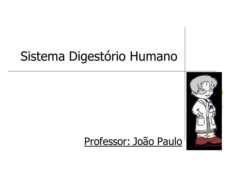 Sistema Digestório Humano Professor: João Paulo