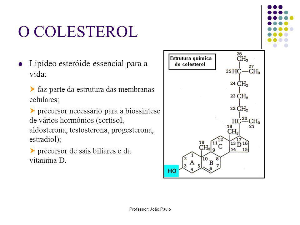 Professor: João Paulo O COLESTEROL Lipídeo esteróide essencial para a vida: faz parte da estrutura das membranas celulares; precursor necessário para a biossíntese de vários hormônios (cortisol, aldosterona, testosterona, progesterona, estradiol); precursor de sais biliares e da vitamina D.