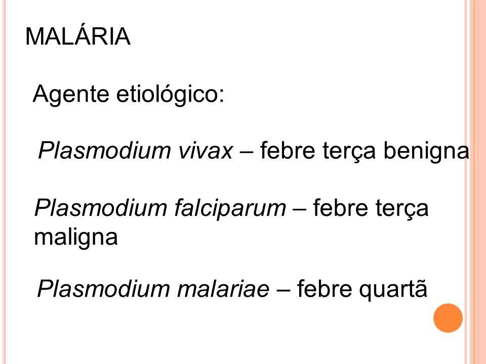 MALÁRIA Agente etiológico: Plasmodium vivax – febre terça benigna Plasmodium falciparum – febre terça maligna Plasmodium malariae – febre quartã