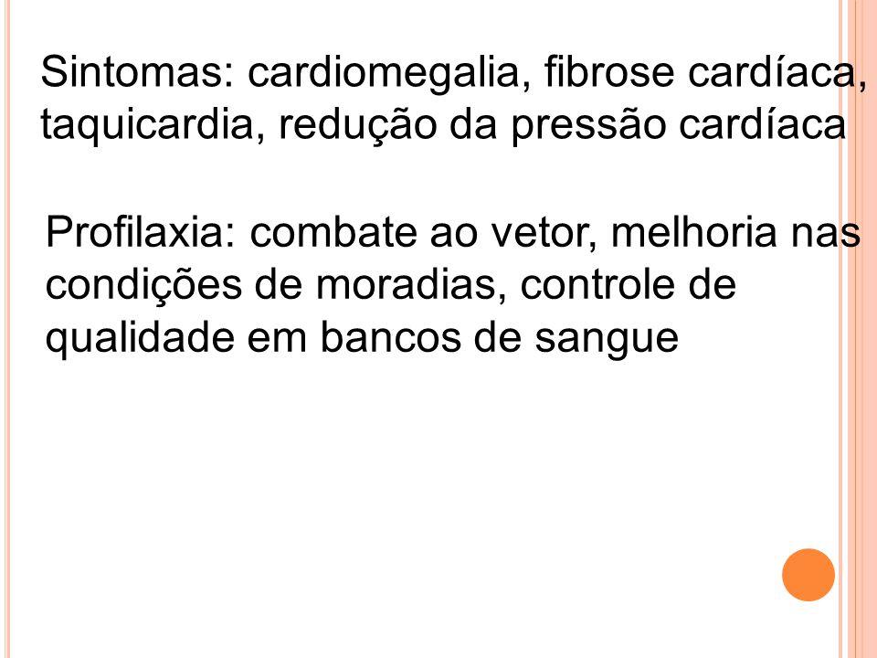 Sintomas: cardiomegalia, fibrose cardíaca, taquicardia, redução da pressão cardíaca Profilaxia: combate ao vetor, melhoria nas condições de moradias,