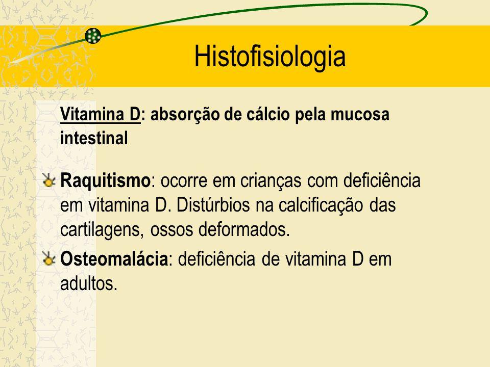 Histofisiologia Nutrição – Ingestão de cálcio e fósforo: importante para a calcificação eficiente da matriz óssea (resistência a fraturas) – Vitamina