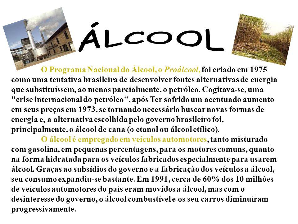 O Programa Nacional do Álcool, o Proálcool, foi criado em 1975 como uma tentativa brasileira de desenvolver fontes alternativas de energia que substit