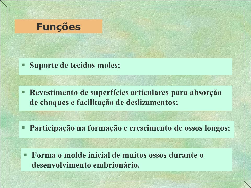 §Células: CONDRÓCITOS Estrutura §Fibras: COLÁGENAS COLÁGENAS + ELÁSTICAS §SFA: GLICOSAMINOGLICANAS PROTEOGLICANAS GLICOPROTEÍNAS