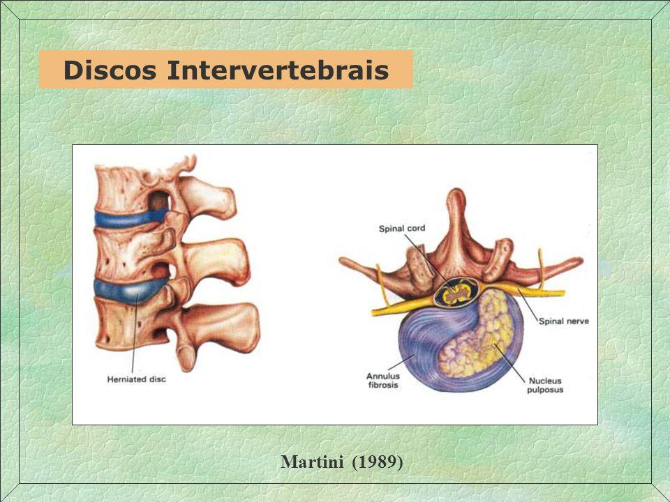 Discos Intervertebrais Martini (1989)