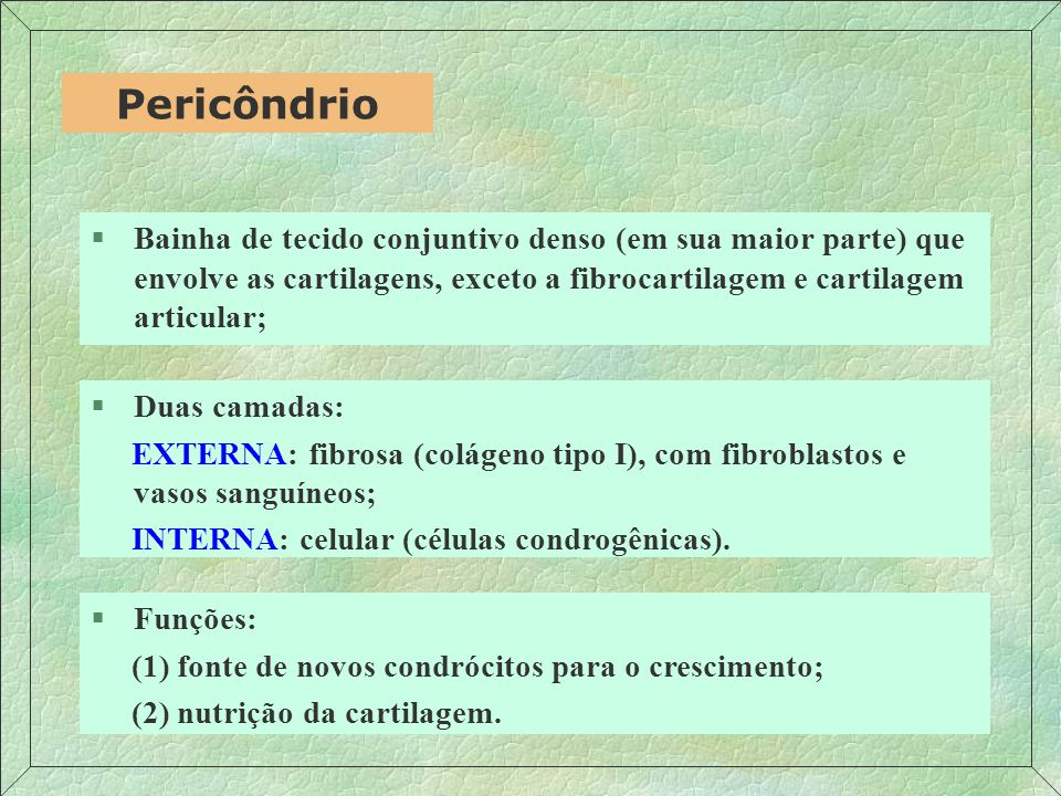 Condrócito Matriz Territorial Condroblasto Fibroblasto do Pericôndrio Junqueira, Carneiro (1999) Matriz Interterritorial
