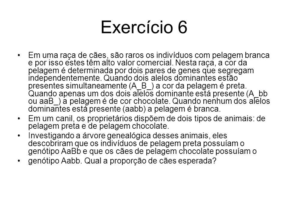 Exercício 6 Em uma raça de cães, são raros os indivíduos com pelagem branca e por isso estes têm alto valor comercial.
