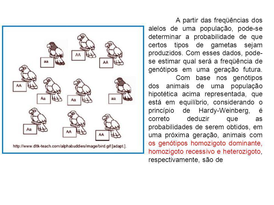 A partir das freqüências dos alelos de uma população, pode-se determinar a probabilidade de que certos tipos de gametas sejam produzidos. Com esses da