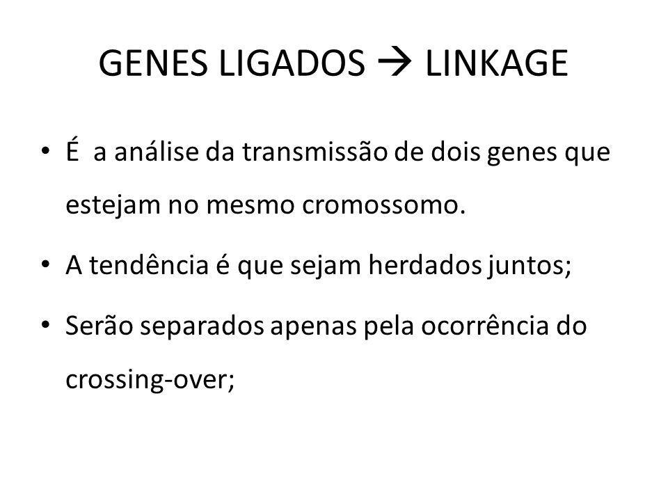 GENES LIGADOS LINKAGE É a análise da transmissão de dois genes que estejam no mesmo cromossomo. A tendência é que sejam herdados juntos; Serão separad