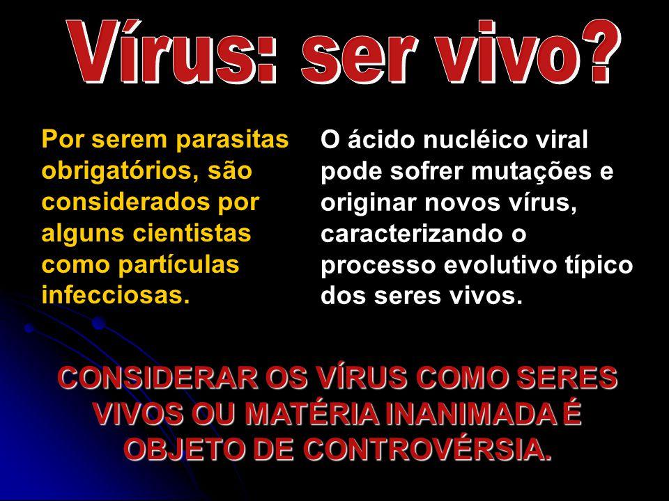 Por serem parasitas obrigatórios, são considerados por alguns cientistas como partículas infecciosas. O ácido nucléico viral pode sofrer mutações e or
