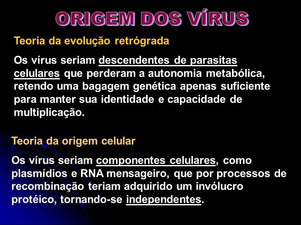Teoria da evolução retrógrada Os vírus seriam descendentes de parasitas celulares que perderam a autonomia metabólica, retendo uma bagagem genética ap