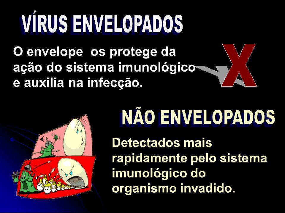 Detectados mais rapidamente pelo sistema imunológico do organismo invadido. O envelope os protege da ação do sistema imunológico e auxilia na infecção