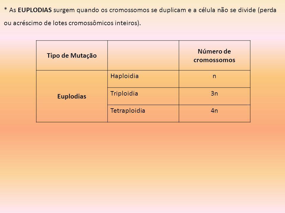 * As EUPLODIAS surgem quando os cromossomos se duplicam e a célula não se divide (perda ou acréscimo de lotes cromossômicos inteiros). Tipo de Mutação