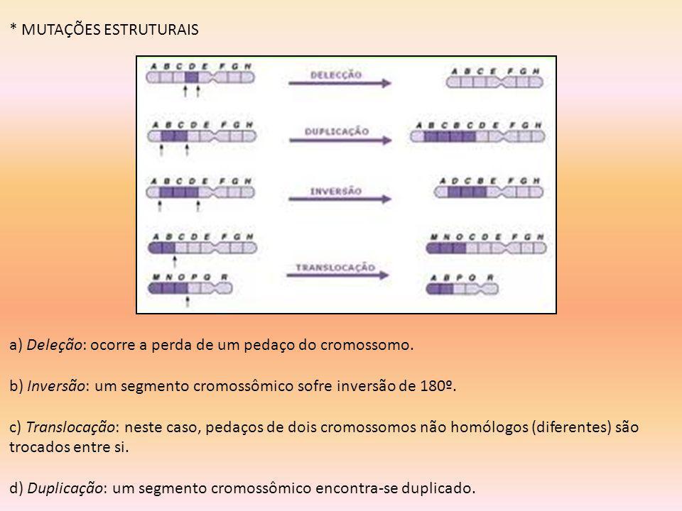 * MUTAÇÕES ESTRUTURAIS a) Deleção: ocorre a perda de um pedaço do cromossomo. b) Inversão: um segmento cromossômico sofre inversão de 180º. c) Translo
