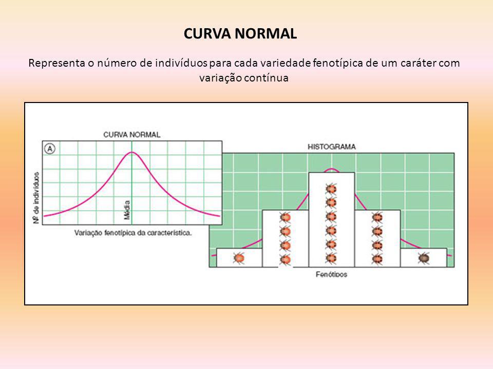 CURVA NORMAL Representa o número de indivíduos para cada variedade fenotípica de um caráter com variação contínua