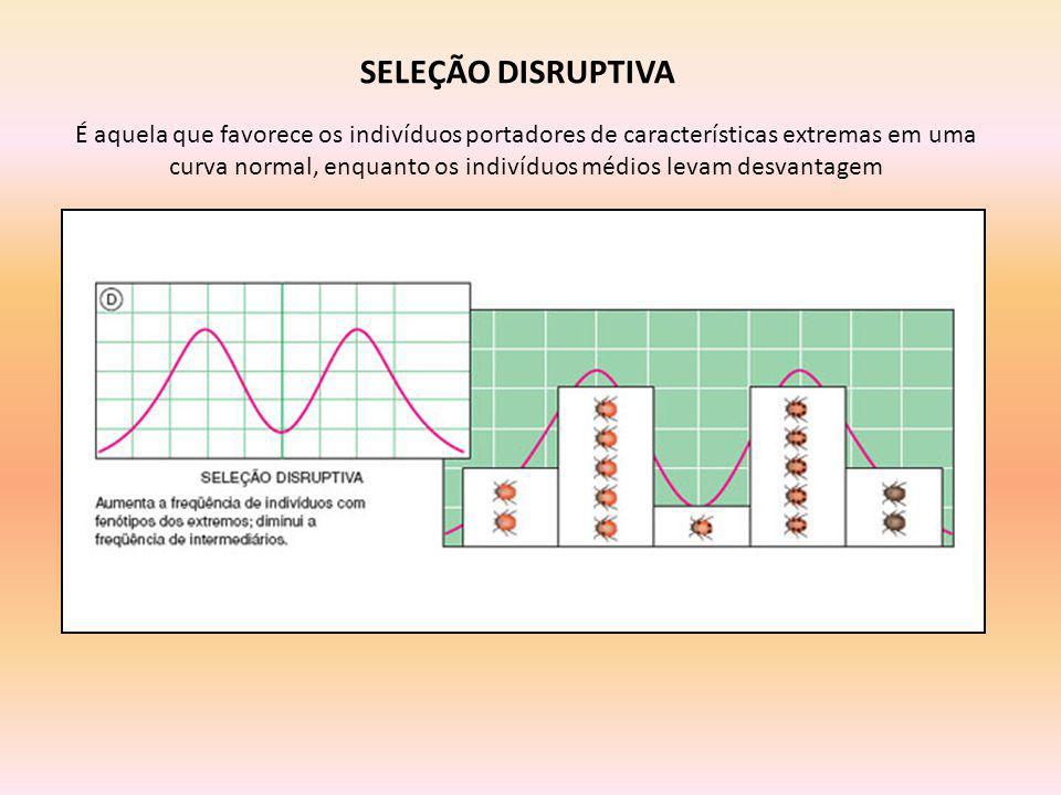 SELEÇÃO DISRUPTIVA É aquela que favorece os indivíduos portadores de características extremas em uma curva normal, enquanto os indivíduos médios levam