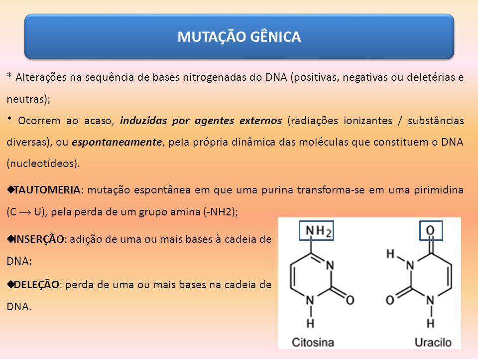 MUTAÇÃO GÊNICA * Alterações na sequência de bases nitrogenadas do DNA (positivas, negativas ou deletérias e neutras); * Ocorrem ao acaso, induzidas po