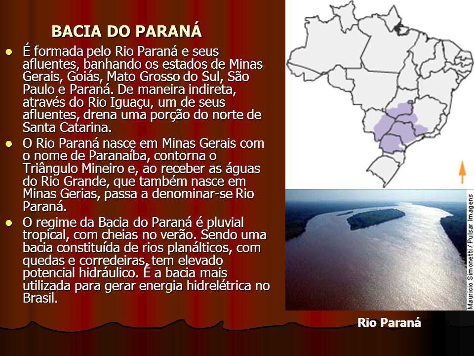 BACIA DO PARANÁ É formada pelo Rio Paraná e seus afluentes, banhando os estados de Minas Gerais, Goiás, Mato Grosso do Sul, São Paulo e Paraná.