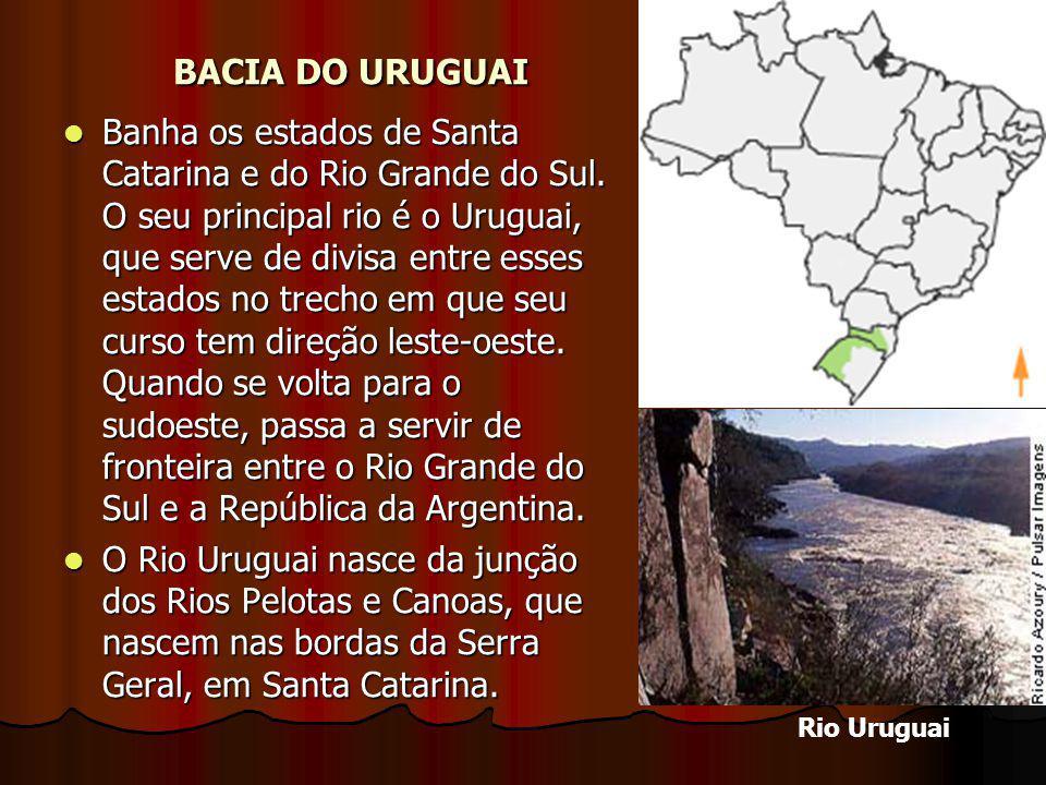 BACIA DO URUGUAI Banha os estados de Santa Catarina e do Rio Grande do Sul. O seu principal rio é o Uruguai, que serve de divisa entre esses estados n