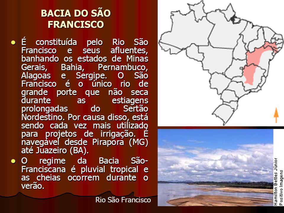 BACIA DO SÃO FRANCISCO É constituída pelo Rio São Francisco e seus afluentes, banhando os estados de Minas Gerais, Bahia, Pernambuco, Alagoas e Sergipe.