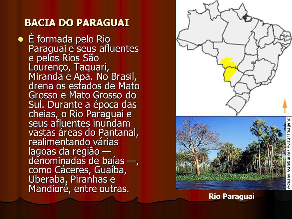 BACIA DO PARAGUAI É formada pelo Rio Paraguai e seus afluentes e pelos Rios São Lourenço, Taquari, Miranda e Apa. No Brasil, drena os estados de Mato