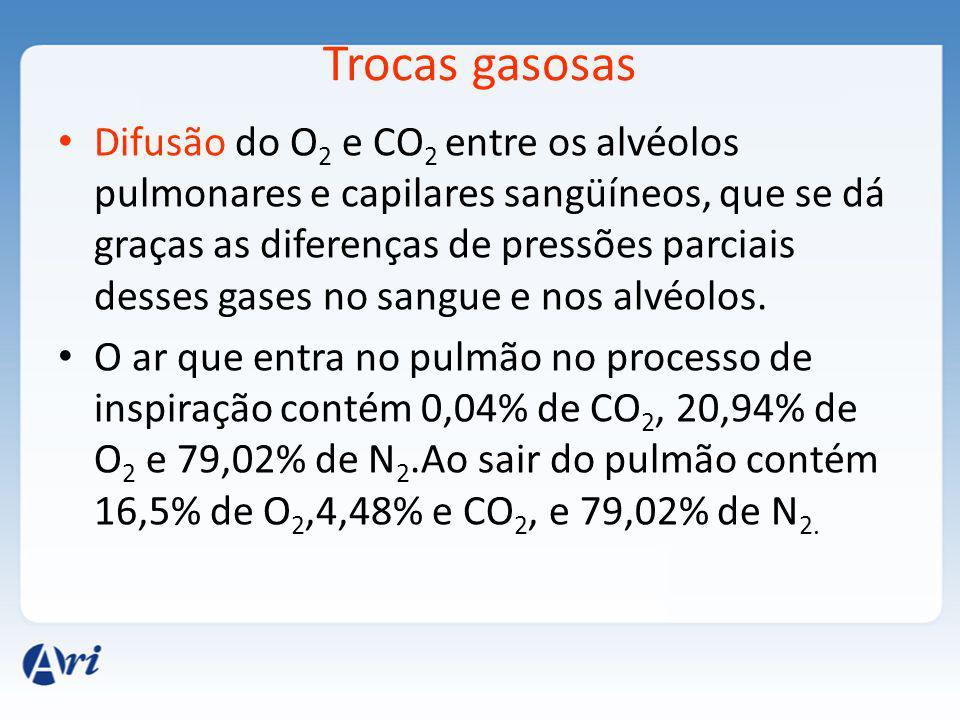 Trocas gasosas Difusão do O 2 e CO 2 entre os alvéolos pulmonares e capilares sangüíneos, que se dá graças as diferenças de pressões parciais desses gases no sangue e nos alvéolos.