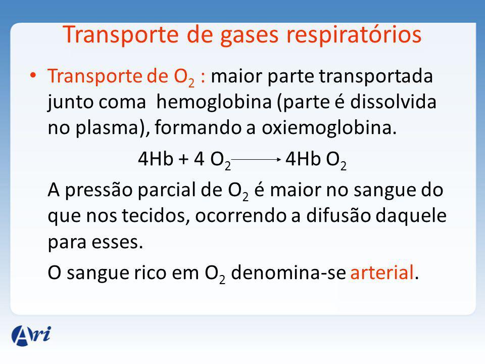 Transporte de gases respiratórios Transporte de O 2 : maior parte transportada junto coma hemoglobina (parte é dissolvida no plasma), formando a oxiemoglobina.